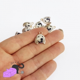 5 charms with dog, Golden Retriever