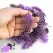 50 natural feathers violet color