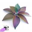 Ciondoli con foglie vere placcate in ottone color viola arcobaleno metallico