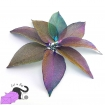 Pendants with real leaves electroplated with brass, metallic rainbow purple color
